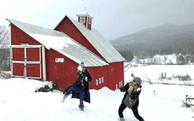 Snowball break at Grandview Farm