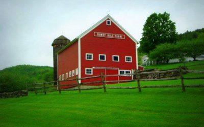 Honey Hill Farm